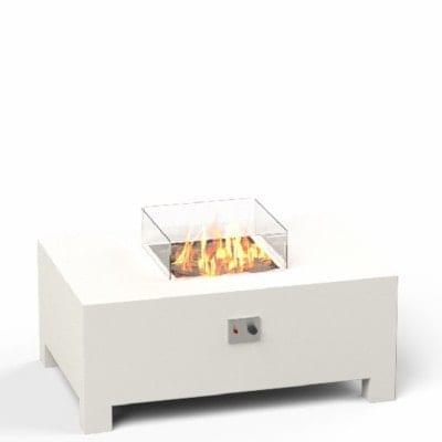 Brann 1